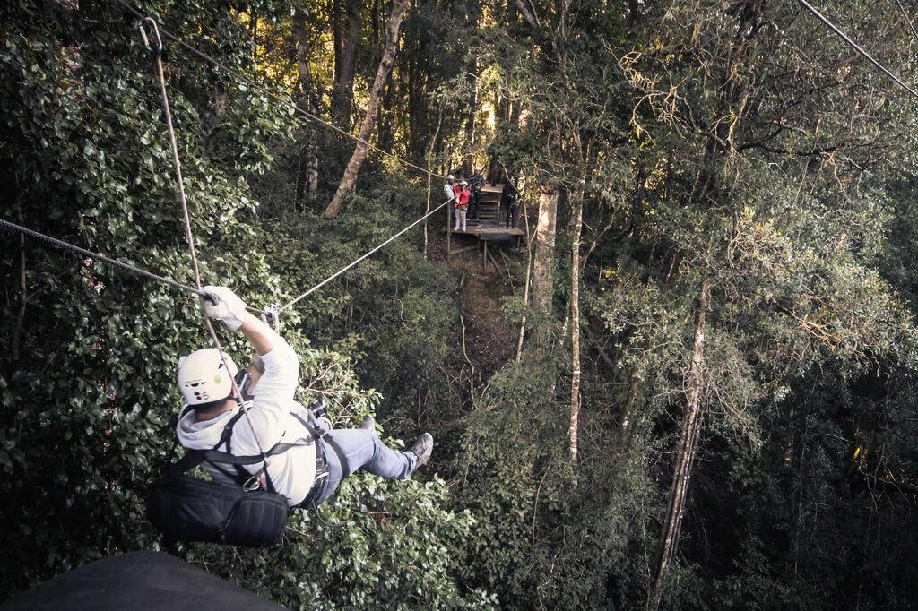 Unzip Adventures - Tsitsikamma Canopy Tours