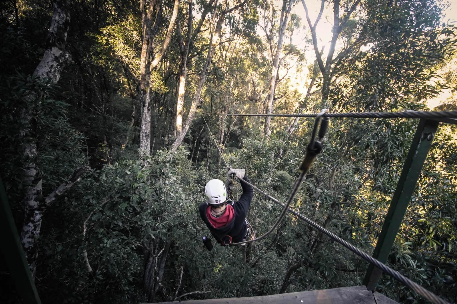 Tsitsikamma Canopy Tours – Unzip Adventures